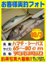 photo-okyakusama-201301005-Koyaura-hamati01.jpg