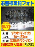 photo-okyakusama-201301023-Koyaura-aori01.jpg