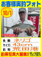 photo-okyakusama-20131001-hikoshima-neri.jpg