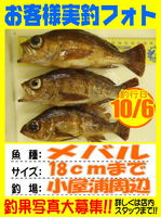 photo-okyakusama-20131007-koyaura-mebaru.jpg