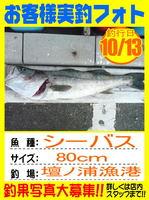 photo-okyakusama-20131013-hikoshima-seabass.jpg