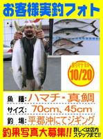 photo-okyakusama-20131020-buri-yamaguchi.jpg