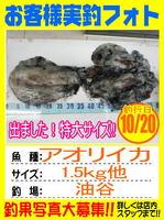 photo-okyakusama-20131020-yamaguch-aoriika2.jpg