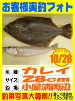 photo-okyakusama-20131028-Koyaura-karei01.jpg