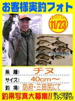 20131123-yamaguchi-tinu.jpg