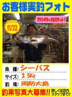 okyakusama-20131123-ooshima-seabass.jpg