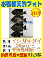 photo-okyakusama-20131103-isigaki.jpg