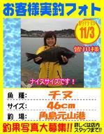 photo-okyakusama-20131103-kikugawa-tinu.jpg