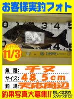 photo-okyakusama-20131105-Koyaura-tinu01.jpg