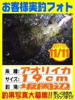 photo-okyakusama-20131112-Koyaura-aori01.jpg