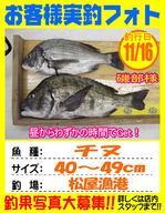 photo-okyakusama-20131116-kikugawa-tinu.jpg