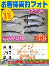 photo-okyakusama-20131116-shinshimo-hirano.jpg