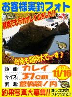 photo-okyakusama-20131116-tainouchi-karei3.jpg