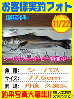 photo-okyakusama-20131122-toyooka-02.jpg
