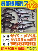 photo-okyakusama-20131123-Koyaura-saba01.jpg