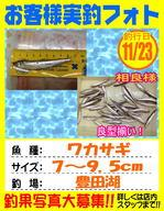 photo-okyakusama-20131123-kikugawa-wakasagi.jpg