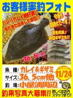 photo-okyakusama-20131124-annkoya-karei7.jpg