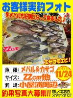 photo-okyakusama-20131124-annkoya-mebaru1.jpg