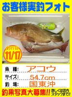 photo-okyakusama-2013117-kunisaki-akou1.jpg