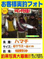 okyakusama-20131201-ooshima-mukunooki.jpg