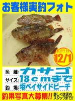 photo-okyakusama-20131203-Koyaura-kasago01.jpg