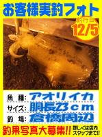 photo-okyakusama-20131207-Koyaura-aoriika01.jpg