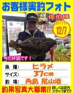 photo-okyakusama-20131207-kikugawa-hirame.jpg
