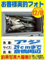 photo-okyakusama-20131208-Koyaura-aji01.jpg