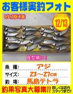 photo-okyakusama-20131213-kikugawa-aji.jpg