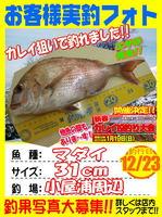 photo-okyakusama-20131223-koyaura-madaii.jpg