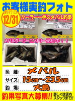 photo-okyakusama-20131231-kaiyuu-mebaru.jpg