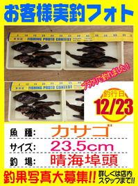 photo-okyakusama20131225-tokuyama-kasago.jpg