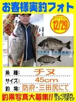 20131229-yamaguchi-tinu.jpg