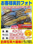 blog-20140103-noumi-kisu.jpg