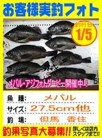 photo-okyakusama-20140105-toyooka-01.jpg