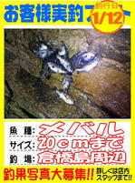 photo-okyakusama-20140112-Koyaura-mebaru01.jpg