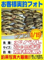 photo-okyakusama-20140120-Koyaura-mebaru01.jpg