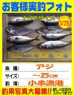 photo-okyakusama-20140129-kikugawa-aji.jpg