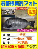 photo-okyakusama-20141228-kikugawa-tinu.jpg