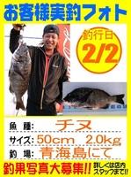 20140202-yamaguchi-tinu.jpg