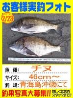 20140203-yamaguchi-tinu.jpg