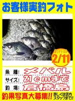 photo-okyakusama-20140211-Koyaura-mebaru02.jpg