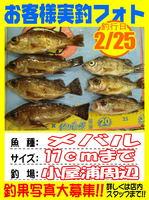 photo-okyakusama-20140226-Koyaura-mebaru01.jpg