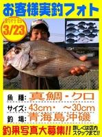 20130323-yamaguchi-madai.jpg