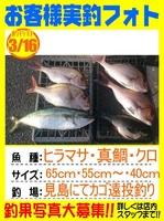 20140316-yamaguchi-madai.jpg