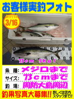 photo-okyakusama-20140316-koyaura-hamati-02.jpg