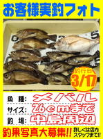 photo-okyakusama-20140319-Koyaura-mebaru01.jpg
