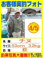 20140405-yamaguchi-tinu.jpg
