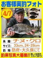 20140407-yamaguchi-tinu.jpg