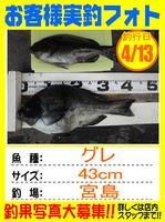 okyakusama-20140413-honten-GURE.jpg